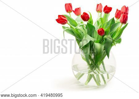 Red Tulips In A Vase Isolated Against White Background - Copyspace