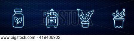 Set Line Plant In Pot, Fertilizer Bottle, Garden Sprayer For Fertilizer And Exotic Tropical Plant. G