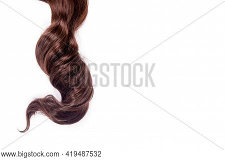 Curly Brown Hair Isolated On White Background. Beautiful Healthy Long Chocolate Brown Hair Lock, Hai