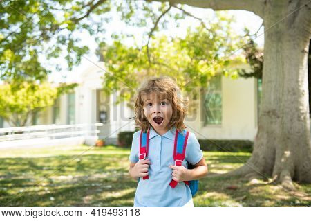 Back To School. Excited Child Ready For Primary School. Amazed Pupil On First Day Of Classes.