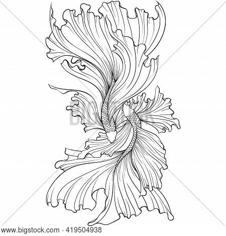 Two Betta Fish Or Siamese Fighter Fish Top View In Simple Hand Drawn Line Art Style. Decorative Gold