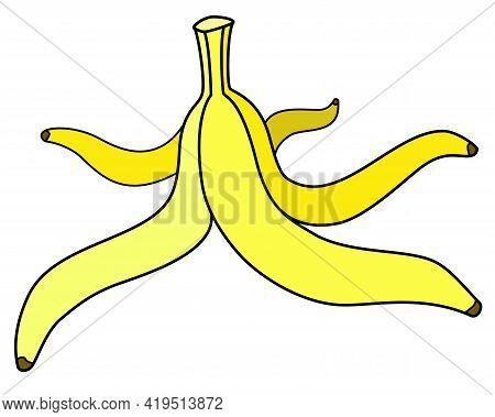 Banana Peel - Vector Full Color Illustration. Yellow Banana Peels, Stem Stem. Fruit Rind On The Floo