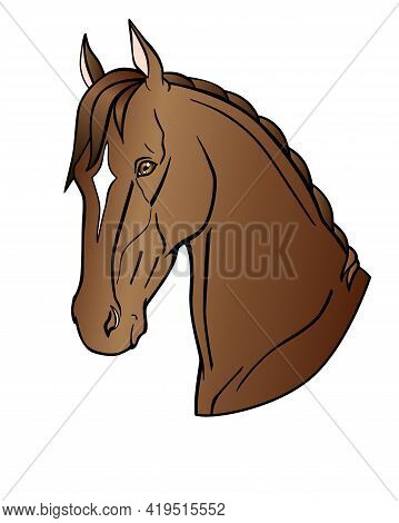 Graceful Head Of A Bay Horse. Akhal-teke Horse - Vector Full Color Illustration. Stallion Of The Eas