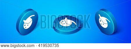 Isometric Test Tube And Flask Chemical Laboratory Test Icon Isolated On Blue Background. Laboratory