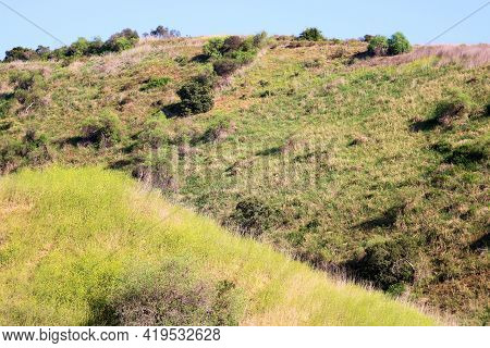 Rolling Hills Covered With Grasslands And Spring Wildflowers Taken On A Prairie At A Grassy Field In