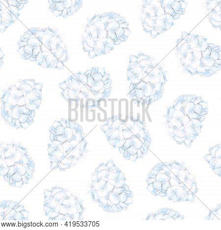 Seamless Pattern. Spring Colors Hydrangea. Digital Print