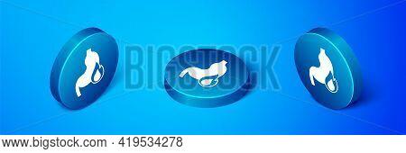 Isometric Stomach Heartburn Icon Isolated On Blue Background. Stomach Burn. Gastritis And Acid Reflu