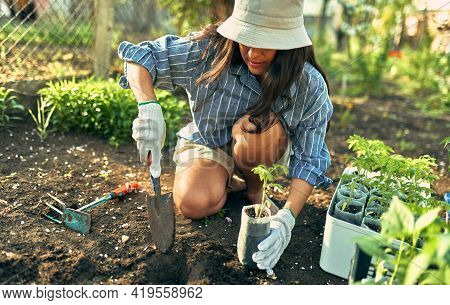 Horizontal Image Of A Beautiful Female Gardener Working With A Trowel In The Garden To Growing New P