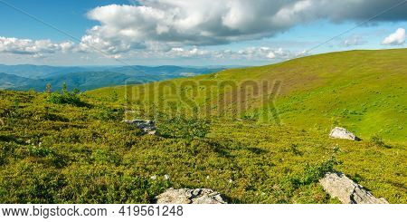 View From Runa Mountain. Grassy Hills And Slopes In Evening Light. Summer Landscape Of Carpathian Mo