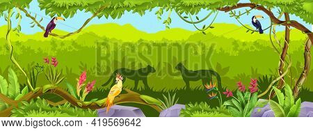 Jungle Vector Forest Background, Exotic Nature Wood Thicket Landscape, Leopard, Toucan, Parrot, Lian