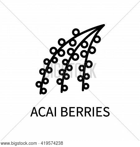 Acai Berry Line Icon In Simple Style. Healthy Healthy Food. Vector Sign In A Simple Style Isolated O