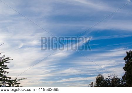 Picture Of Dark Blue Sky With White Cloud Lines And Trees In Evening