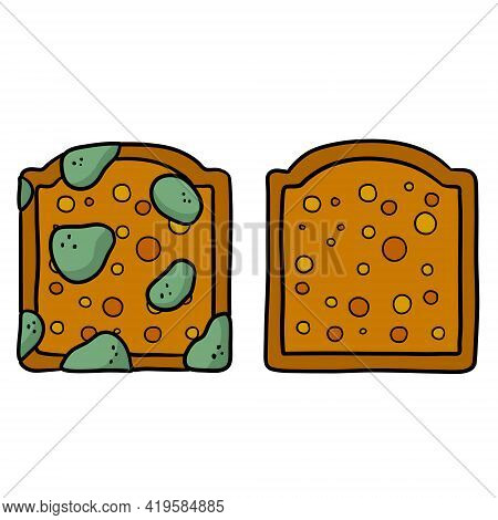 Bread With Mold. Incorrect Storage Of The Product. Fungus And Rot. Sliced Loaf For A Sandwich. Carto