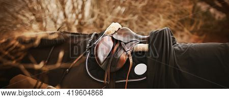 A Bay Horse With A Dark Mane Is Wearing A Leather Saddle, A Dark Saddlecloth, A Black Horse Blanket