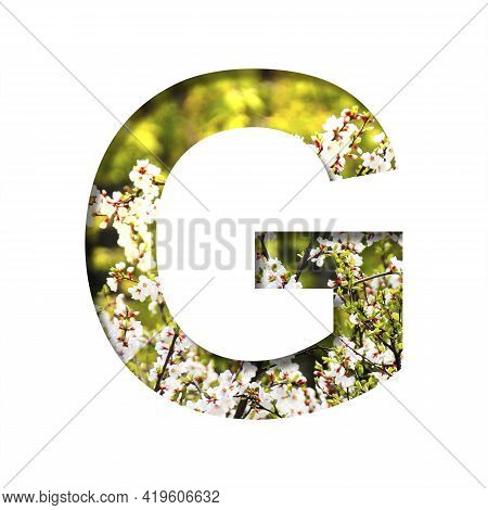 Spring Sunny Font. The Letter G Cut Out Of Paper On The Background Of Blooming Cherry On A Sunny Spr