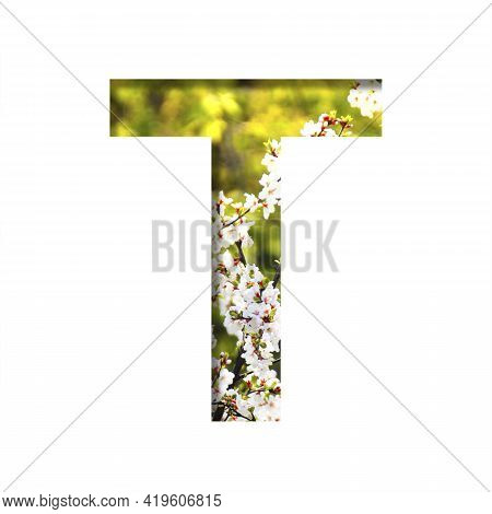Spring Sunny Font. The Letter T Cut Out Of Paper On The Background Of Blooming Cherry On A Sunny Spr
