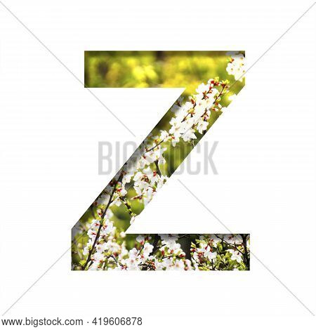Spring Sunny Font. The Letter Z Cut Out Of Paper On The Background Of Blooming Cherry On A Sunny Spr