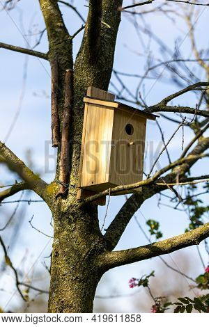 A Wooden Homemade Birdhouse Standing On A Branch Of A Leafless Tree In A Garden On A Sunny Day. The