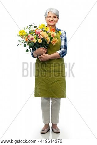 gardening, floristics and old people concept - portrait of smiling senior woman in green garden apron with bunch of flower over white background