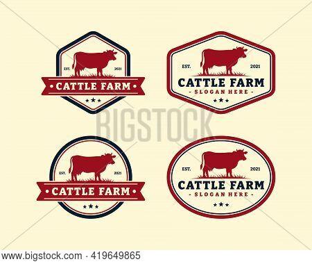 Set Of Cattle Farm Logo Template Design. Vintage Black Angus Badge Vector.
