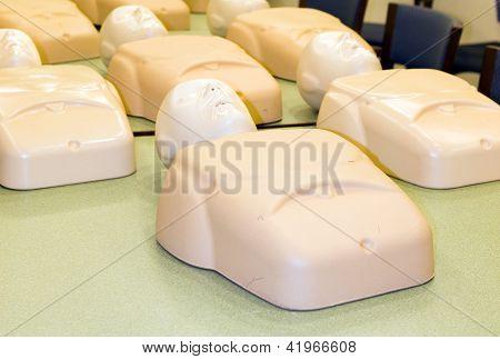 Mannequins In Cpr Training Class Cardiopulmonary Resuscitation