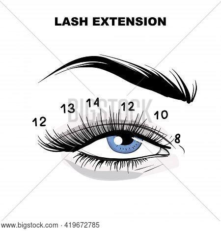 Eyelash Extension Microblading Beauty Procedure. Beauty Salon Cosmetic Treatment, Meakeup, Self Care