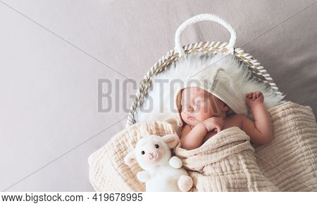 Sleeping Newborn Baby In Basket Wrapped In Blanket In White Fur Background. Portrait Of New Born Chi