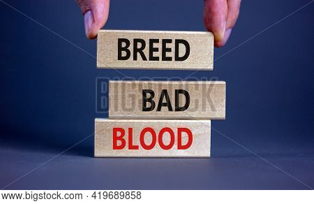 Breed Bad Blood Symbol. Businessman Holds Wooden Block With Words 'breed Bad Blood'. Beautiful Grey