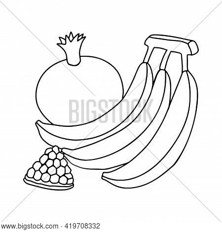 Bananas And Pomegranates. Harvest Fruits. Vector Black And White Drawing. Childrens Coloring, Object