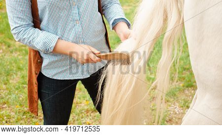 A Young Beautiful Woman Combs The Horse's Hair. A Ponytail And A Mane Comb. Love, Care Pet, Friendsh