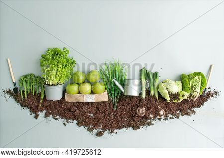 Organic Green Fruits And Vegetables Garden Growth Concept