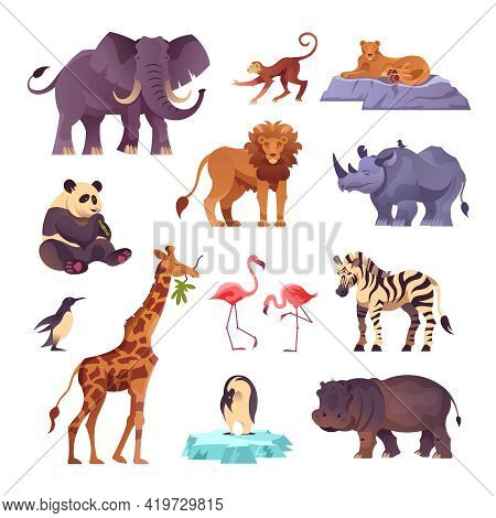 Set Of Animals From Different Continents Of The Planet Collected In The Zoo Flat Vector Illustration