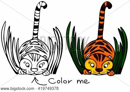 Cute Tiger Illustration In Cartoon Style For Coloring Page In Kids Book. Tiger Is A Symbol Of 2022 Y
