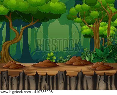 Dark Forest Scene On A Cliff Illustration
