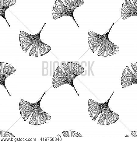 Seamless Pattern With Leaves. Ginkgo Biloba Leaves Background. Hand Drawn Black And White Vector Ill