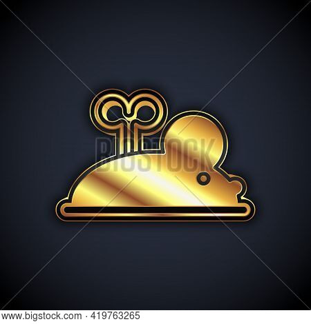 Gold Clockwork Mouse Icon Isolated On Black Background. Wind Up Mouse Toy. Vector