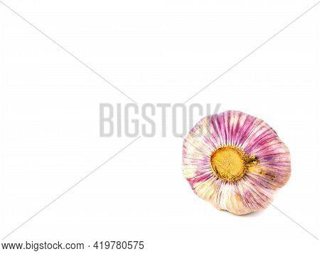 Garlic Vegetable Bulb On A White Background. Allium Sativum. Spicy Garlic Vegetable. Family Of Onion