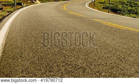 Empty Asphalt Road Running Through Green Nature