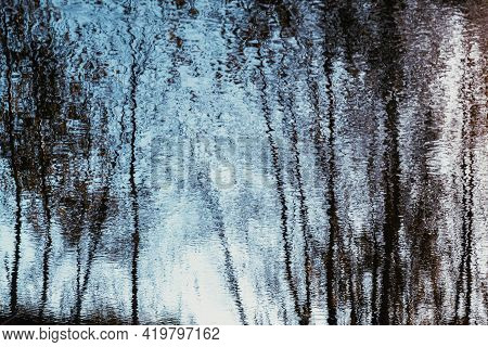 Reflection Of Birch Trees In The Blue Water