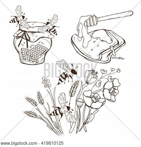 Set With Honey Jar, Sandwich With Honey And Bees Flying Over Flowers. Kit To Decorate Apiary Product
