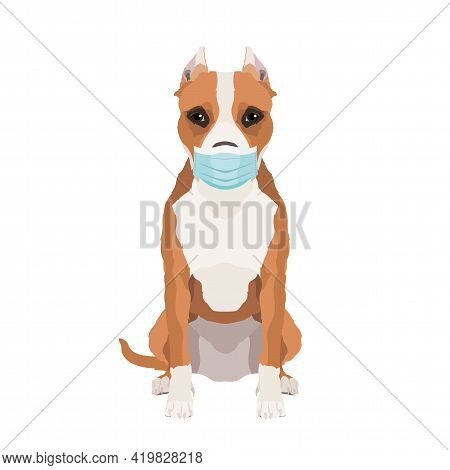 Vector Illustration Of American Staffordshire Terrier Wearing Face Mask Isolated On White Background