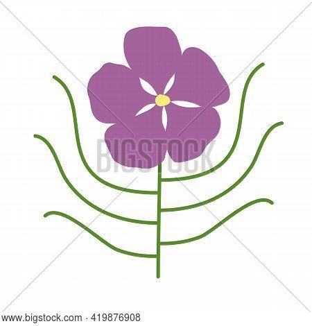 Byblis Gigantea Australian Flower. Large Purple Flower With Long Thin Leaves. Hand-drawn Vector. Car