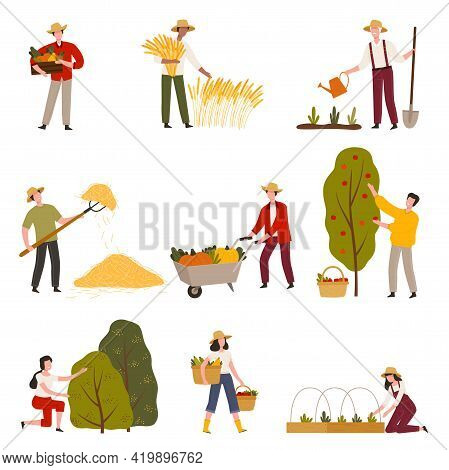 Farmers Or Agricultural Workers Cultivating Plants And Gathering Crops Vector Illustration Set