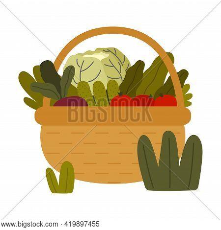 Ripe Vegetables In Wicker Basket As Seasonal Harvesting And Yield Vector Illustration