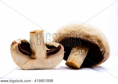 Fresh Champignons, Champignon Mushrooms, Close-up, Isolated