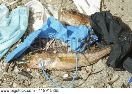 Ocean Fish Dead Eating Alkaline Discarded Battery On A Debris Polluted Sea Habitat, Nature Contamina