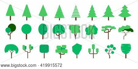 Set Of Trees. Diverse Trees On A White Background. Flat Forest Tree. Flat Design. Vector Illustratio