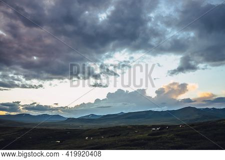 Beautiful Mountain Scenery With Horses And Golden Dawn Light In Cloudy Sky. Scenic Mountain Landscap