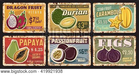 Tropical Fruits Rusty Metal Plates, Vector Vintage Rust Tin Signs With Ripe Exotic Fruits. Fresh And