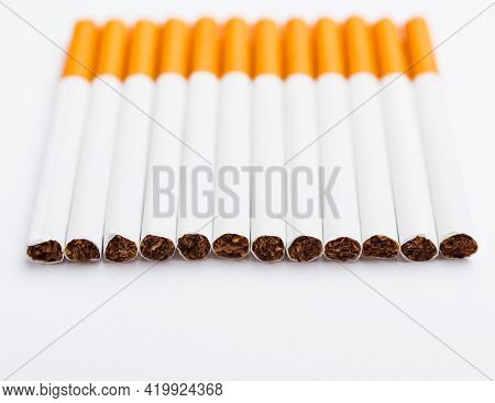 31 May Of World No Tobacco Day, No Smoking, Close Up Of Lined Up Full Pile Cigarette Or Tobacco On W